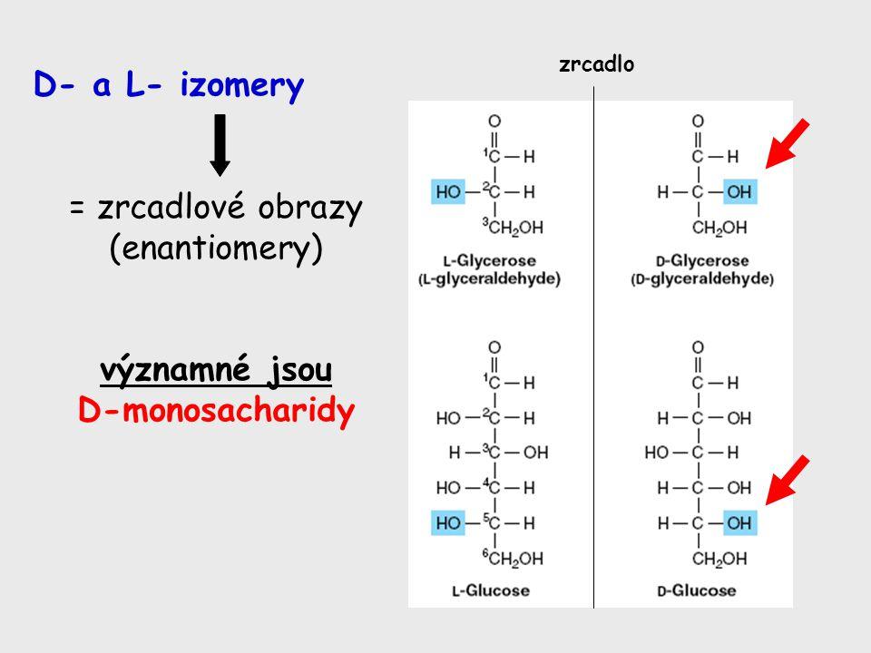 D- a L- izomery = zrcadlové obrazy (enantiomery) významné jsou D-monosacharidy zrcadlo