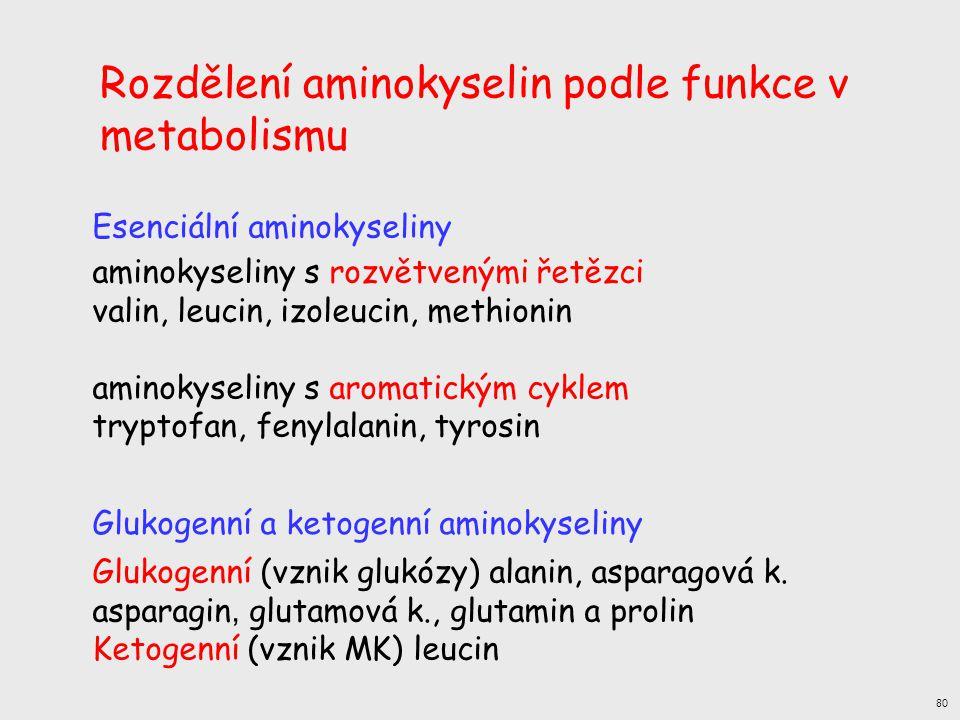 aminokyseliny s rozvětvenými řetězci valin, leucin, izoleucin, methionin aminokyseliny s aromatickým cyklem tryptofan, fenylalanin, tyrosin Esenciální