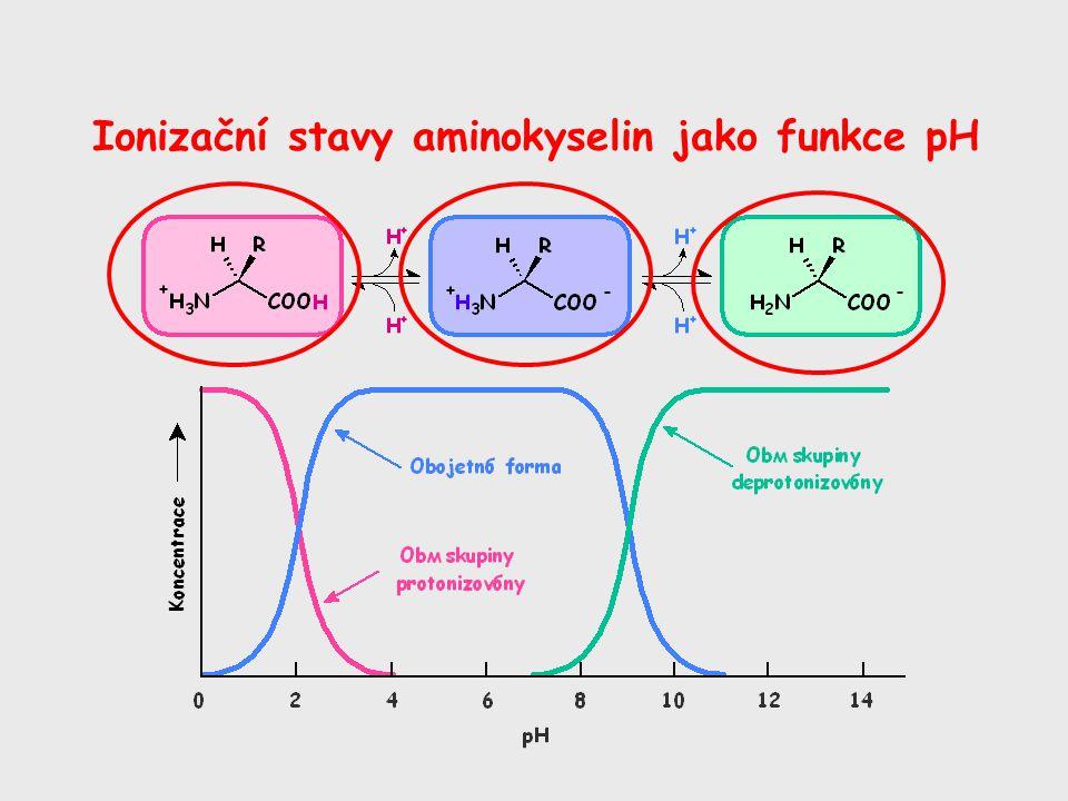Ionizační stavy aminokyselin jako funkce pH