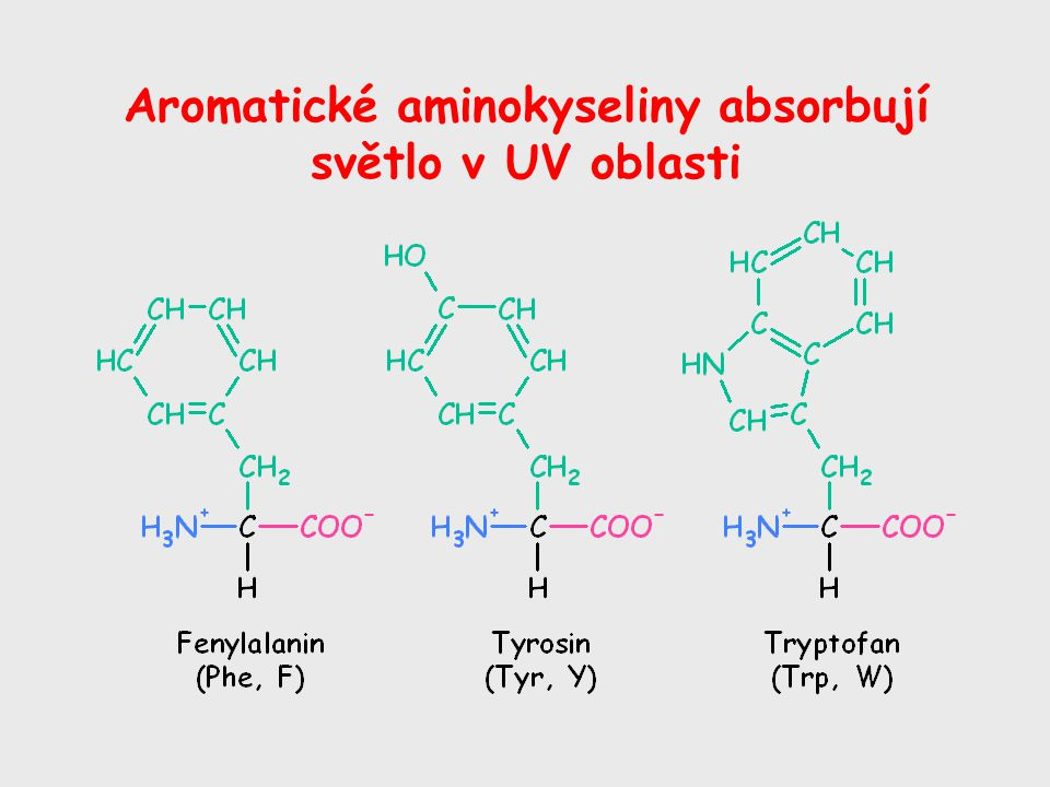 Aromatické aminokyseliny absorbují světlo v UV oblasti