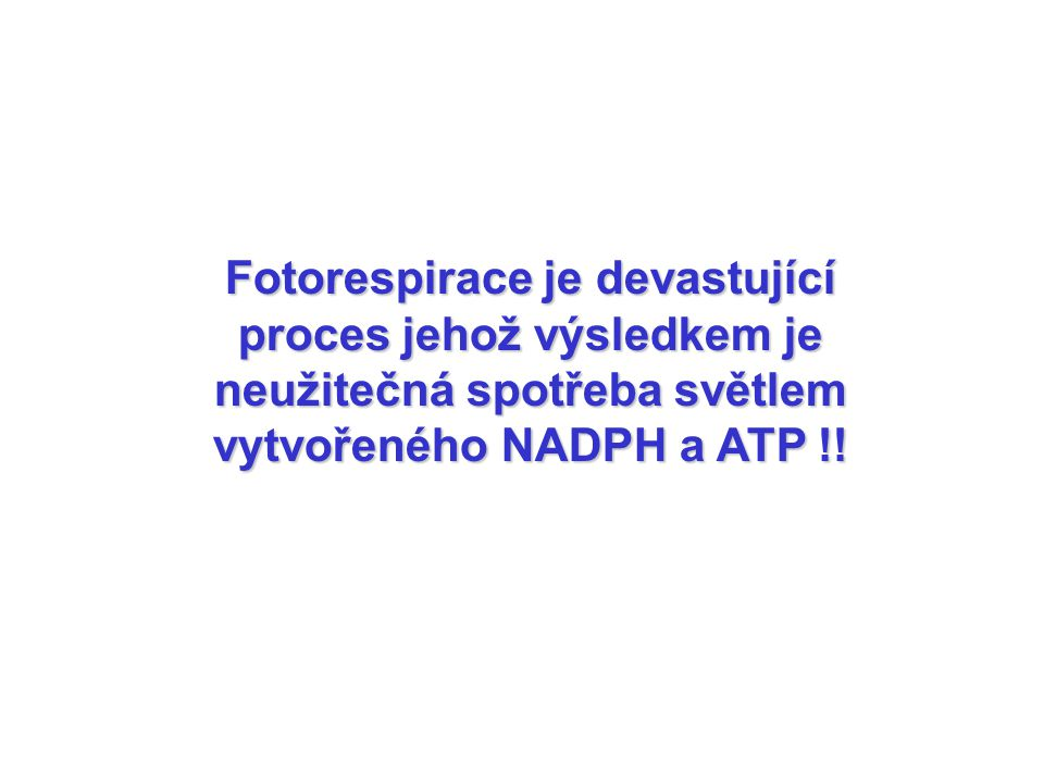 Fotorespirace je devastující proces jehož výsledkem je neužitečná spotřeba světlem vytvořeného NADPH a ATP !!