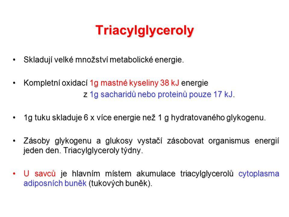 Triacylglyceroly Skladují velké množství metabolické energie.Skladují velké množství metabolické energie.
