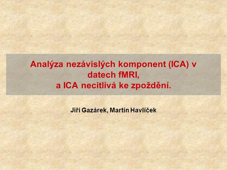 Jiří Gazárek, Martin Havlíček Analýza nezávislých komponent (ICA) v datech fMRI, a ICA necitlivá ke zpoždění.