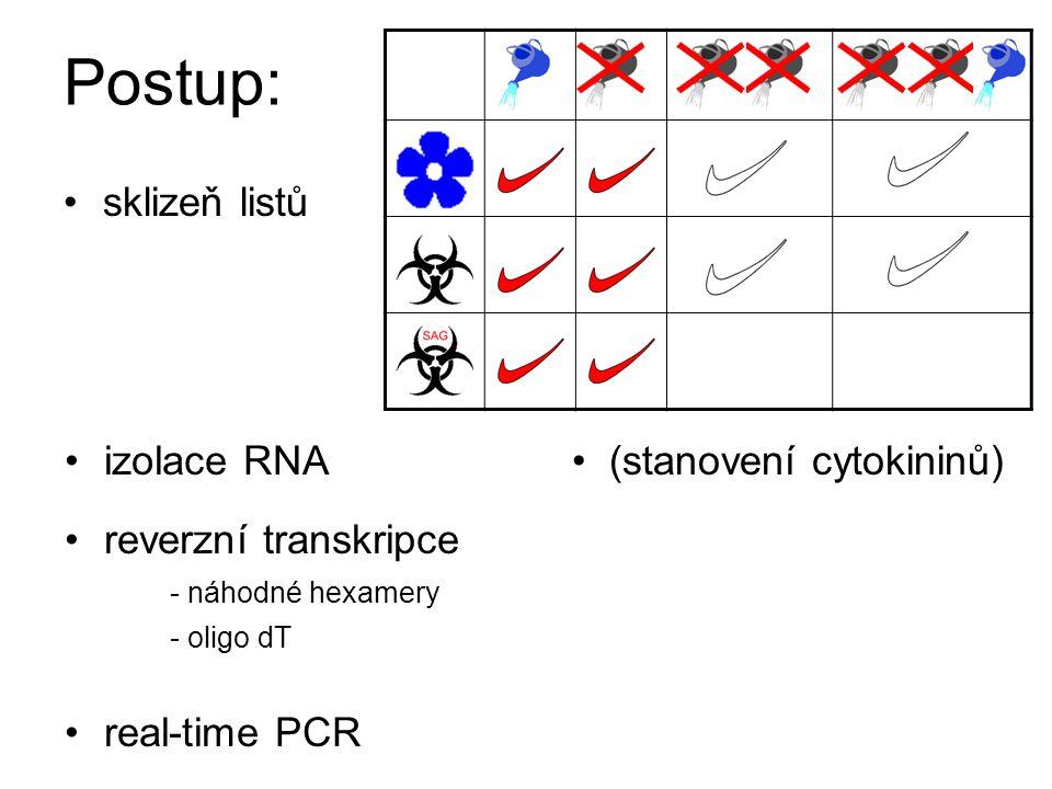 Postup: sklizeň listů reverzní transkripce - náhodné hexamery - oligo dT real-time PCR (stanovení cytokininů)izolace RNA