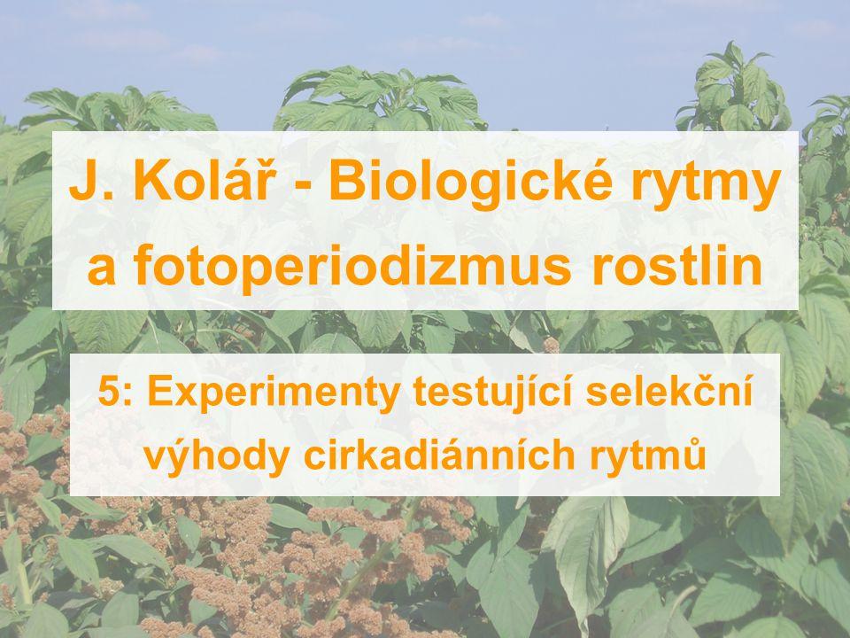 J. Kolář - Biologické rytmy a fotoperiodizmus rostlin 5: Experimenty testující selekční výhody cirkadiánních rytmů