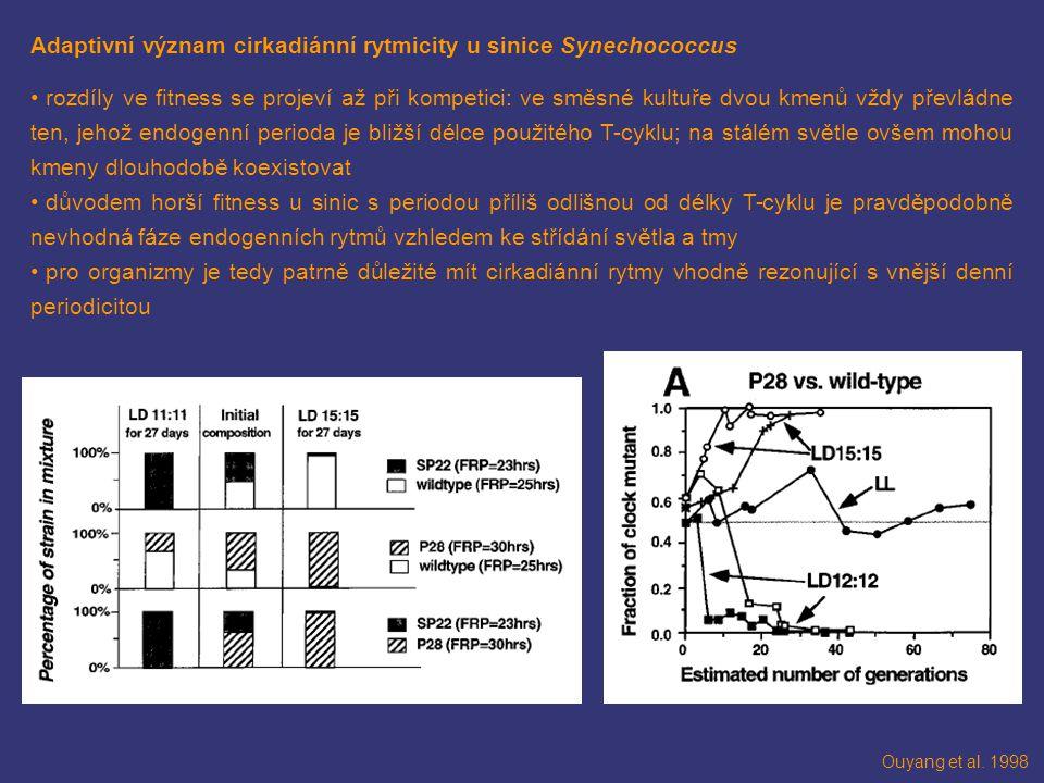 Adaptivní význam cirkadiánní rytmicity u sinice Synechococcus rozdíly ve fitness se projeví až při kompetici: ve směsné kultuře dvou kmenů vždy převládne ten, jehož endogenní perioda je bližší délce použitého T-cyklu; na stálém světle ovšem mohou kmeny dlouhodobě koexistovat důvodem horší fitness u sinic s periodou příliš odlišnou od délky T-cyklu je pravděpodobně nevhodná fáze endogenních rytmů vzhledem ke střídání světla a tmy pro organizmy je tedy patrně důležité mít cirkadiánní rytmy vhodně rezonující s vnější denní periodicitou Ouyang et al.