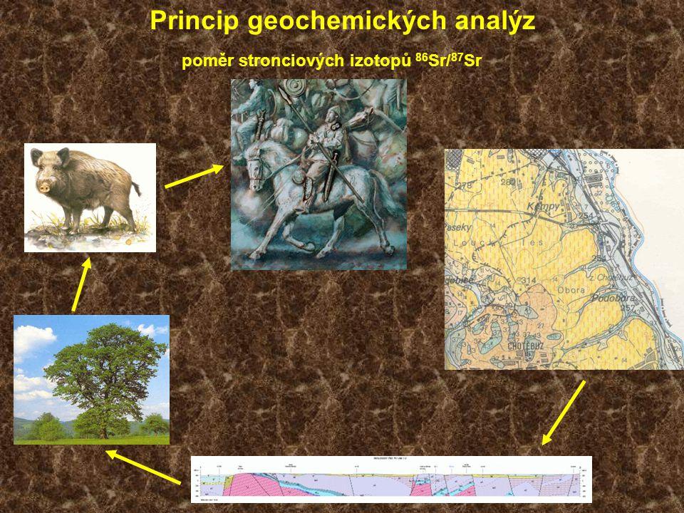 Princip geochemických analýz poměr stronciových izotopů 86 Sr/ 87 Sr