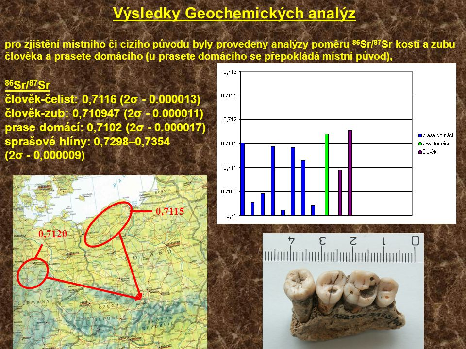 Výsledky Geochemických analýz pro zjištění místního či cizího původu byly provedeny analýzy poměru 86 Sr/ 87 Sr kostí a zubu člověka a prasete domácíh