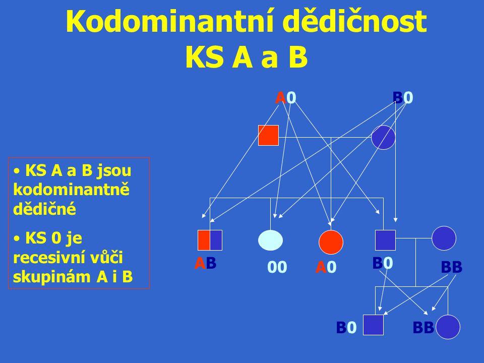 A0A0B0B0 ABAB A0A0 B0B0 B0B0BB Kodominantní dědičnost KS A a B KS A a B jsou kodominantně dědičné KS 0 je recesivní vůči skupinám A i B BB