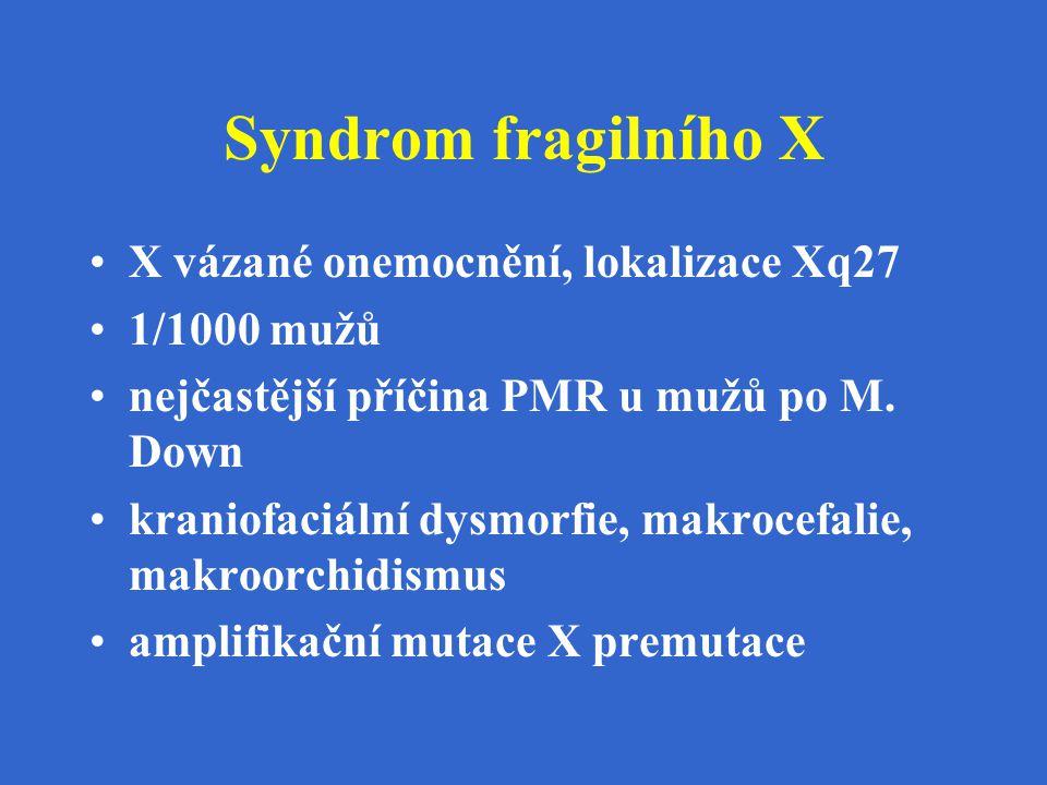 Syndrom fragilního X X vázané onemocnění, lokalizace Xq27 1/1000 mužů nejčastější příčina PMR u mužů po M. Down kraniofaciální dysmorfie, makrocefalie