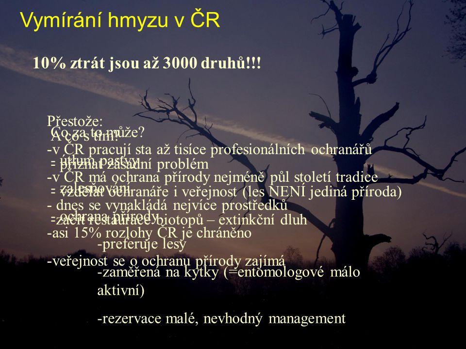 10% ztrát jsou až 3000 druhů!!! Co za to může? - útlum pastvy - zalesňování - ochrana přírody -preferuje lesy -zaměřená na kytky (=entomologové málo a