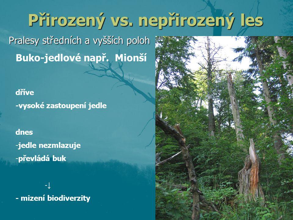 Přirozený vs. nepřirozený les Pralesy středních a vyšších poloh dříve -vysoké zastoupení jedle dnes -jedle nezmlazuje -převládá buk -↓ - mizení biodiv