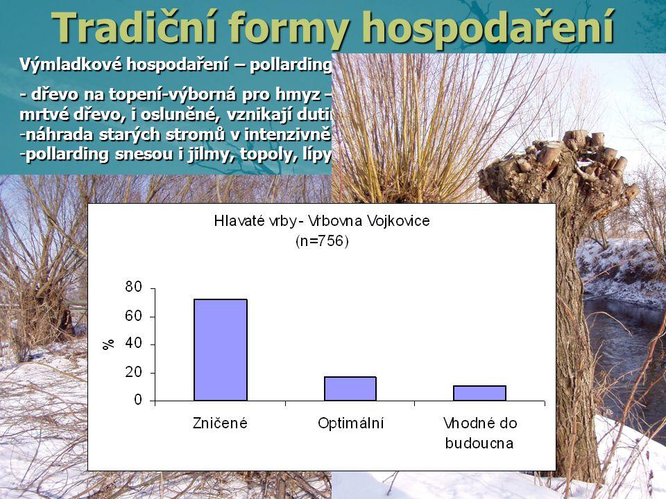 Výmladkové hospodaření – pollarding – ořezávání - dřevo na topení-výborná pro hmyz – ořezaný kmen nabízí živé i mrtvé dřevo, i osluněné, vznikají dutiny -náhrada starých stromů v intenzivně využívané krajině – vrbovny -pollarding snesou i jilmy, topoly, lípy a mnoho dalších stromů Tradiční formy hospodaření Páchník hnědý – v dutinách stromů, nejlépe osluněné, ohrožený Dutinu má málo stromů, ale ořezávané stromy téměř všechny