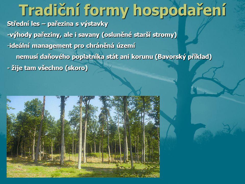 Tradiční formy hospodaření Střední les – pařezina s výstavky -výhody pařeziny, ale i savany (osluněné starší stromy) -ideální management pro chráněná