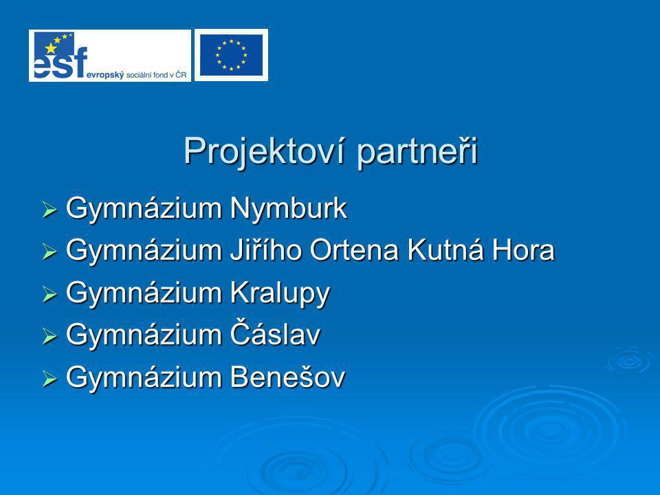 Evropský sociální fond – ESF Začlenění projektu MONITOR do struktury ESF  Operační program Rozvoj lidských zdrojů  Zkvalitňování vzdělávání ve školách a školských zařízeních a rozvoj podpůrných systémů vzdělávání  Modernizace školních vzdělávacích programů – rozvoj klíčových kompetencí
