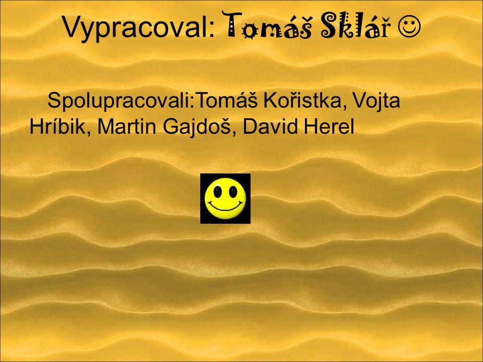 Vypracoval: Tomáš Sklá ř Spolupracovali:Tomáš Kořistka, Vojta Hríbik, Martin Gajdoš, David Herel