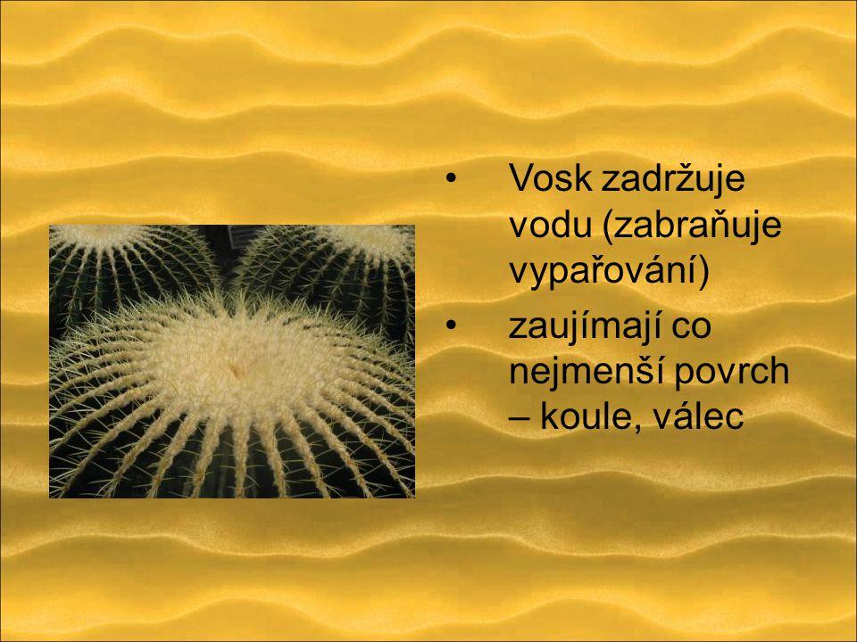Vosk zadržuje vodu (zabraňuje vypařování) zaujímají co nejmenší povrch – koule, válec