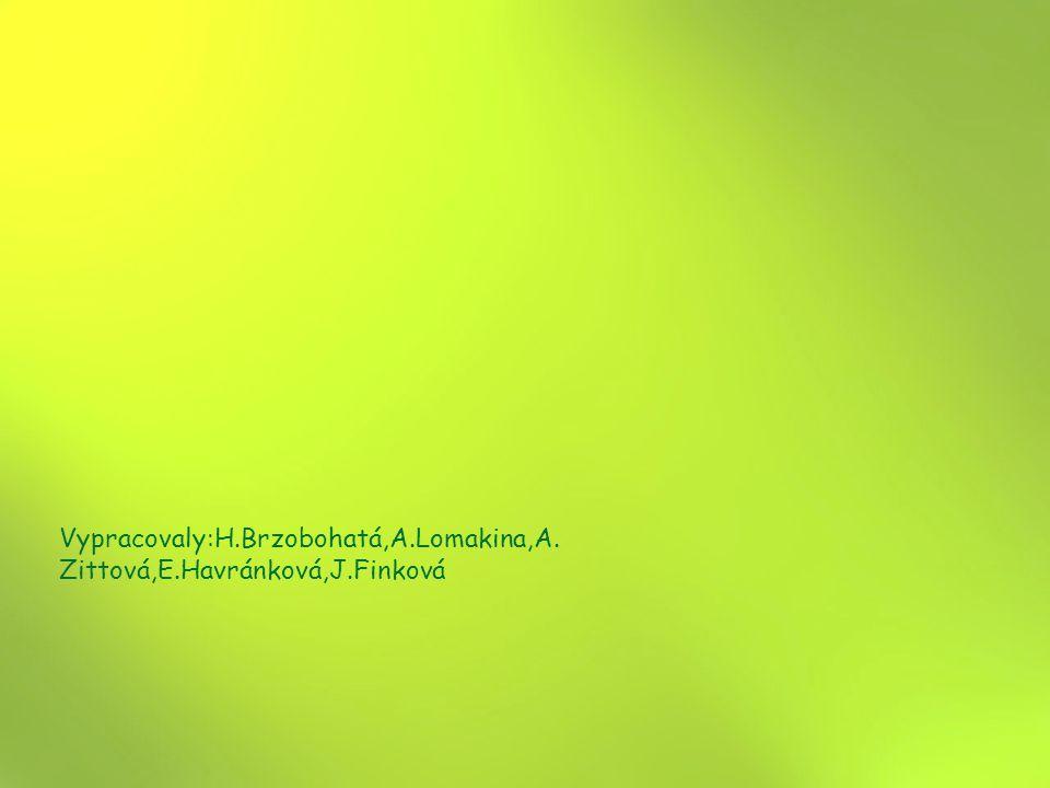 Vypracovaly:H.Brzobohatá,A.Lomakina,A. Zittová,E.Havránková,J.Finková