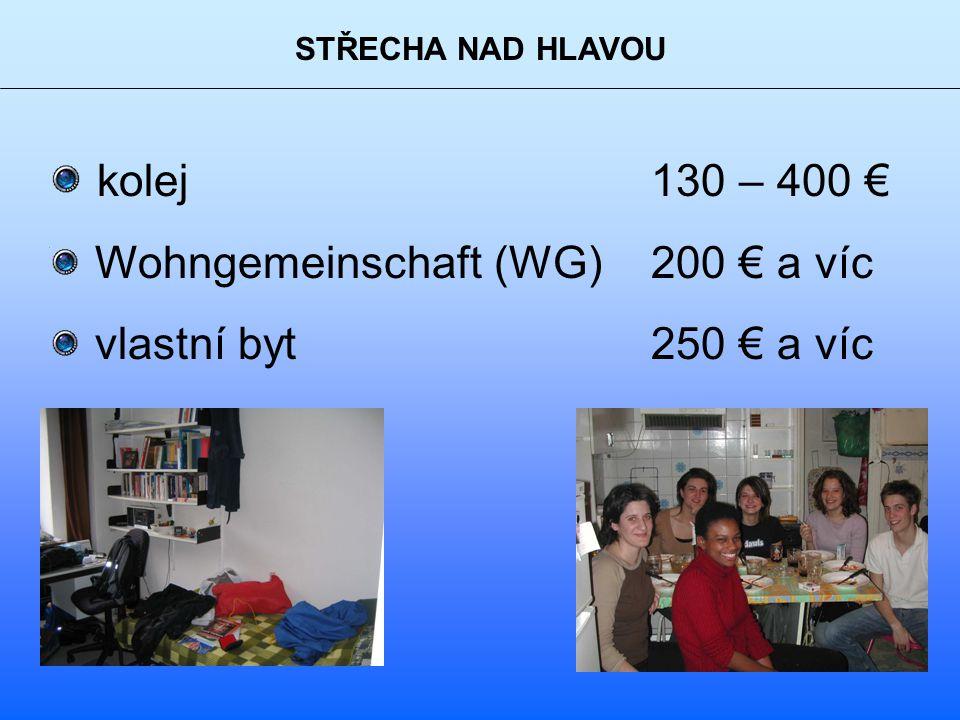 STŘECHA NAD HLAVOU kolej 130 – 400 € Wohngemeinschaft (WG) 200 € a víc vlastní byt 250 € a víc