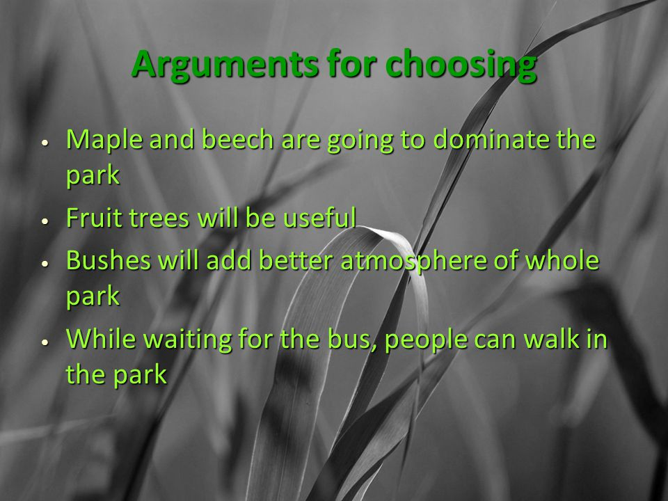 Arguments for choosing Maple and beech are going to dominate the park Maple and beech are going to dominate the park Fruit trees will be useful Fruit trees will be useful Bushes will add better atmosphere of whole park Bushes will add better atmosphere of whole park While waiting for the bus, people can walk in the park While waiting for the bus, people can walk in the park