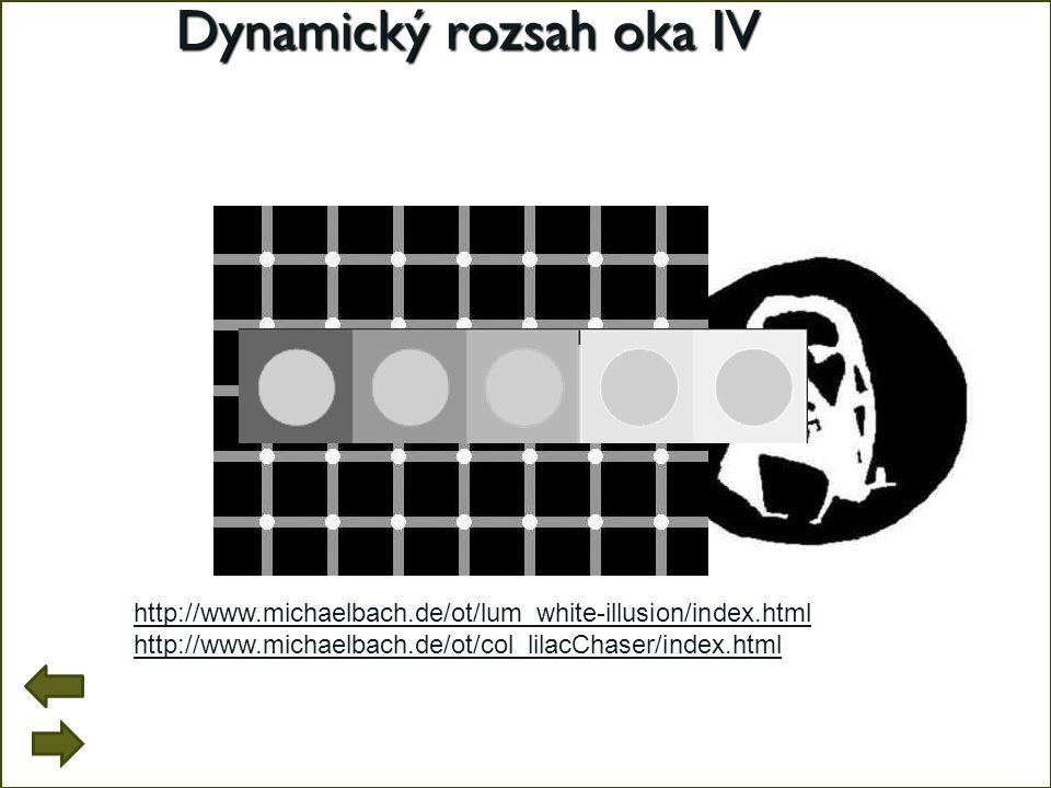 Dynamický rozsah oka IV http://www.michaelbach.de/ot/lum_white-illusion/index.html http://www.michaelbach.de/ot/col_lilacChaser/index.html