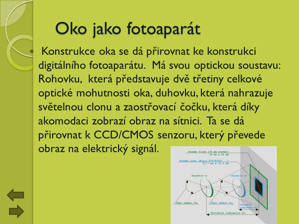 Oko jako fotoaparát Oko jako fotoaparát Konstrukce oka se dá přirovnat ke konstrukci digitálního fotoaparátu. Má svou optickou soustavu: Rohovku, kter