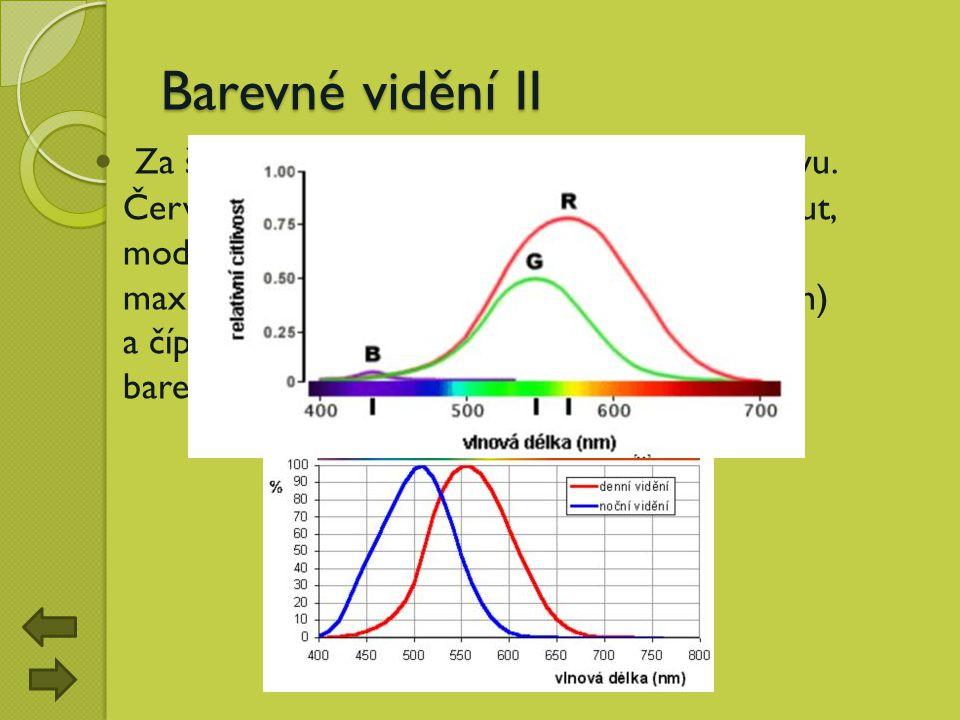 Barevné vidění II Za šera dochází k takzvanému Purkyňovu jevu. Červené věci začínají ztrácet barvu a tmavnout, modré objekty se zjasní. Je to dáno odl
