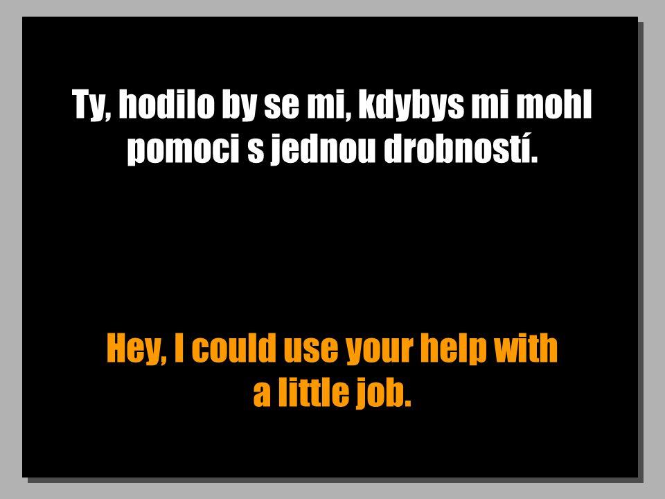 Ty, hodilo by se mi, kdybys mi mohl pomoci s jednou drobností.