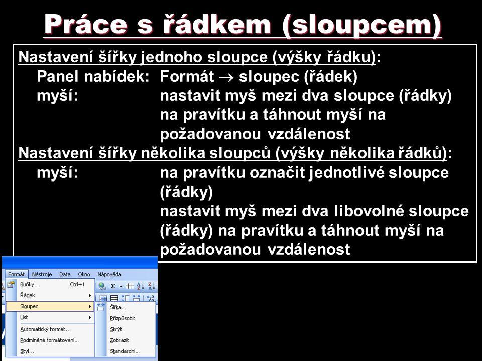 Práce s řádkem (sloupcem) Nastavení šířky jednoho sloupce (výšky řádku): Panel nabídek: Formát  sloupec (řádek) myší:nastavit myš mezi dva sloupce (ř