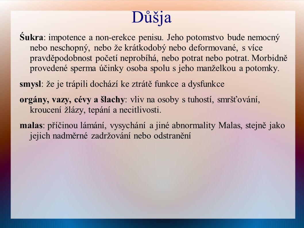 Důšja Śukra: impotence a non-erekce penisu.