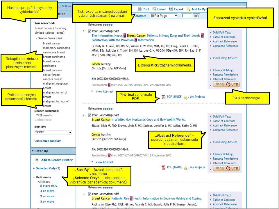 Zobrazení výsledků vyhledávání. Nástroje pro práci s výsledky vyhledávání.