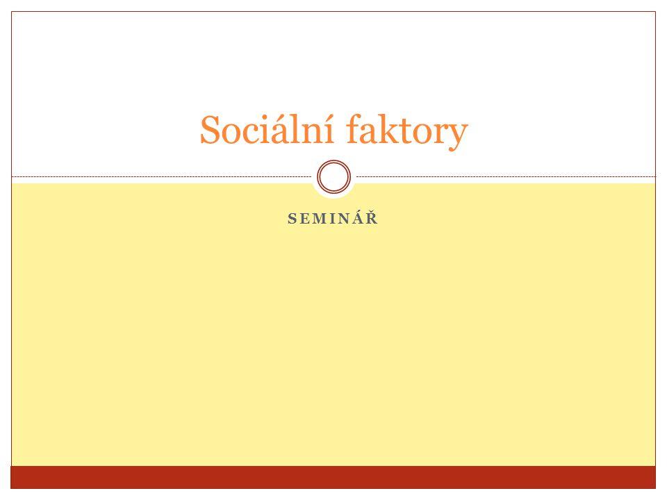 SEMINÁŘ Sociální faktory