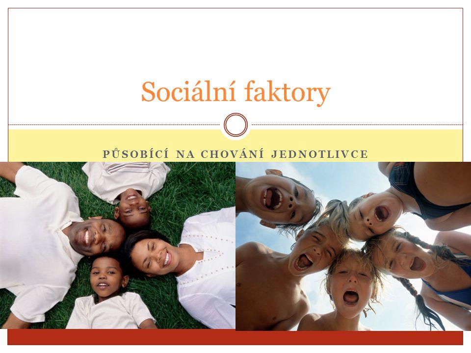 PŮSOBÍCÍ NA CHOVÁNÍ JEDNOTLIVCE Sociální faktory