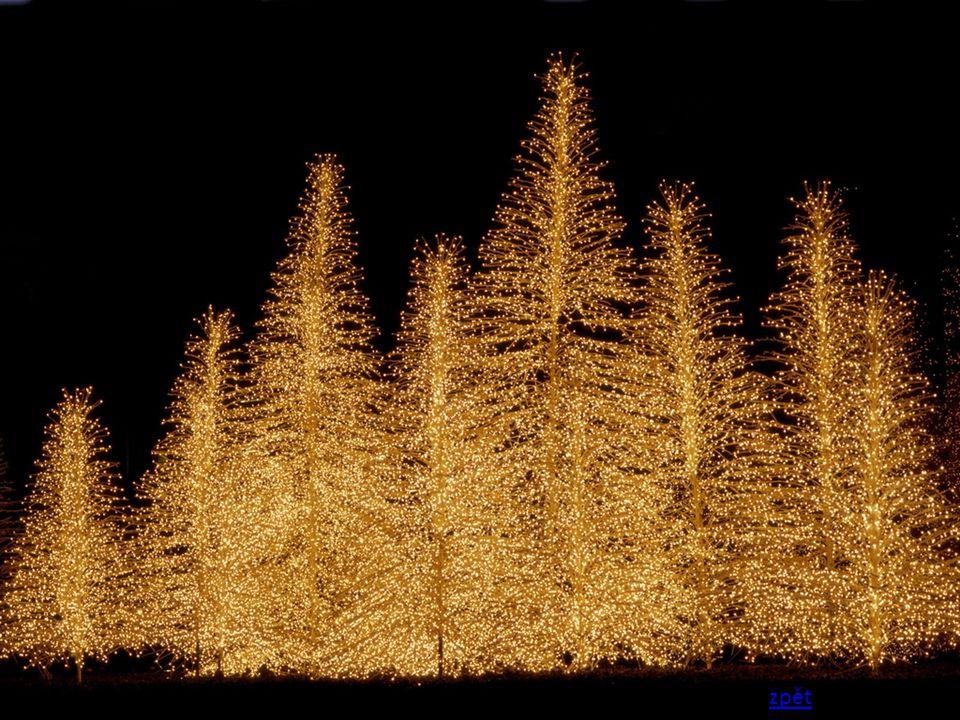 Na Vánoce, na svátky, upečem si dobrůtky.Ozdobíme stromeček, zabalíme dáreček.