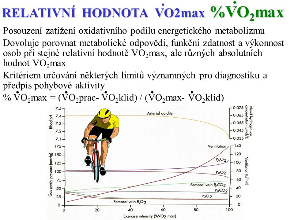 RELATIVNÍ HODNOTAVO2max %VO 2 max RELATIVNÍ HODNOTA VO2max %VO 2 max Posouzení zatížení oxidativního podílu energetického metabolizmu Dovoluje porovna