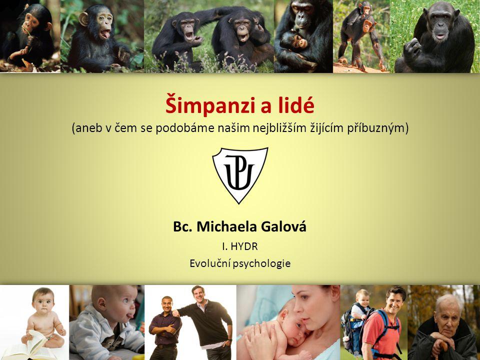 Šimpanzi a lidé (aneb v čem se podobáme našim nejbližším žijícím příbuzným) Bc.