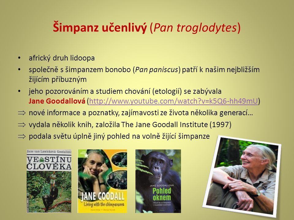 Šimpanz učenlivý (Pan troglodytes) africký druh lidoopa společně s šimpanzem bonobo (Pan paniscus) patří k našim nejbližším žijícím příbuzným jeho pozorováním a studiem chování (etologií) se zabývala Jane Goodallová (http://www.youtube.com/watch?v=k5Q6-hh49mU)http://www.youtube.com/watch?v=k5Q6-hh49mU  nové informace a poznatky, zajímavosti ze života několika generací…  vydala několik knih, založila The Jane Goodall Institute (1997)  podala světu úplně jiný pohled na volně žijící šimpanze