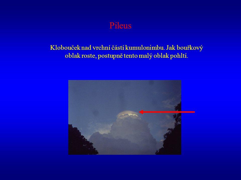 Pileus Klobouček nad vrchní částí kumulonimbu. Jak bouřkový oblak roste, postupně tento malý oblak pohltí.