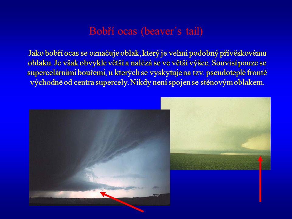 Bobří ocas (beaver´s tail) Jako bobří ocas se označuje oblak, který je velmi podobný přívěskovému oblaku. Je však obvykle větší a nalézá se ve větší v
