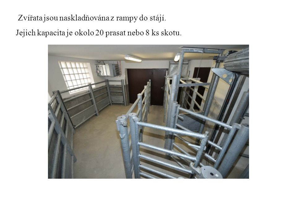 Zvířata jsou naskladňována z rampy do stájí. Jejich kapacita je okolo 20 prasat nebo 8 ks skotu.