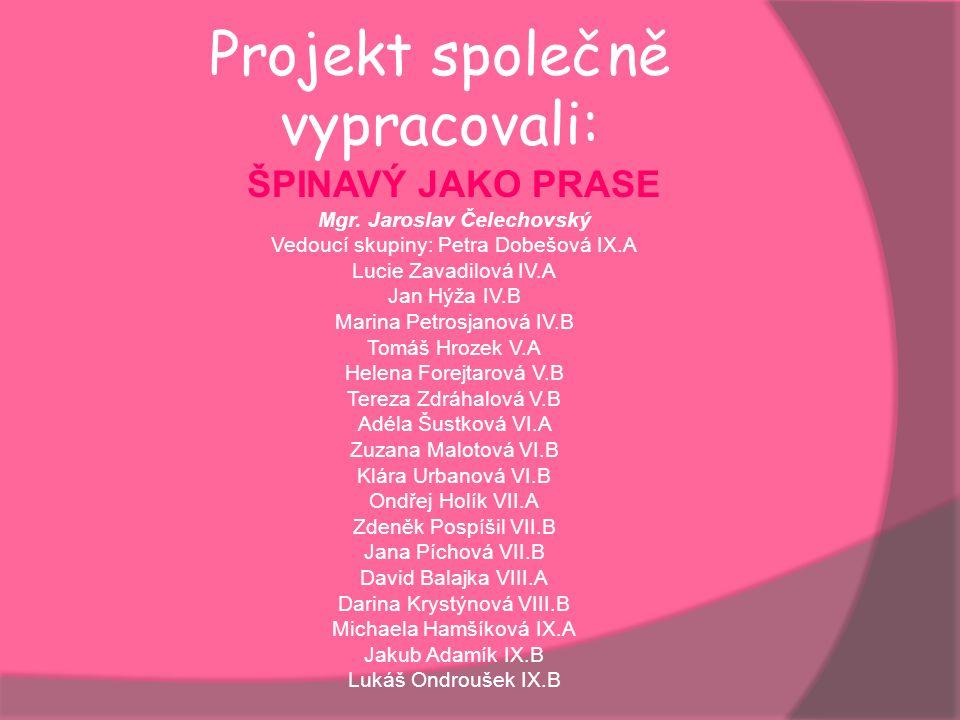 Projekt společně vypracovali: ŠPINAVÝ JAKO PRASE Mgr. Jaroslav Čelechovský Vedoucí skupiny: Petra Dobešová IX.A Lucie Zavadilová IV.A Jan Hýža IV.B Ma