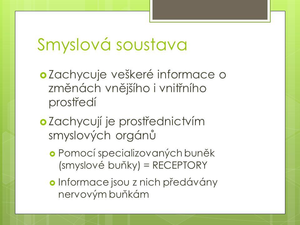 Použité zdroje KVASNIČKOVÁ, L.Ekologický přírodopis 8.