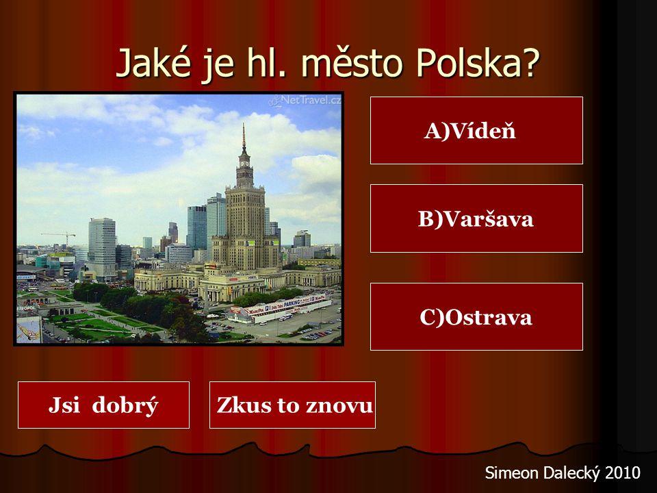 Hrad Malbork (křižácký hrad – sever Polska) Simeon Dalecký 2010 Polsko