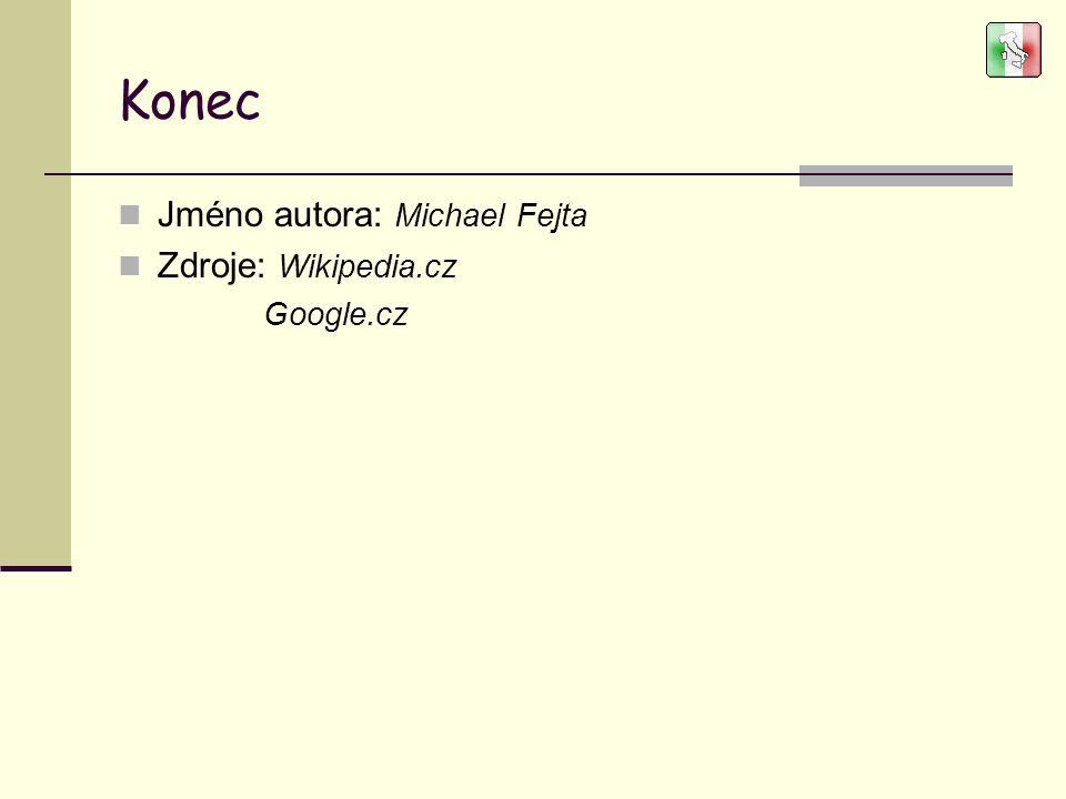 Konec Jméno autora: Michael Fejta Zdroje: Wikipedia.cz Google.cz