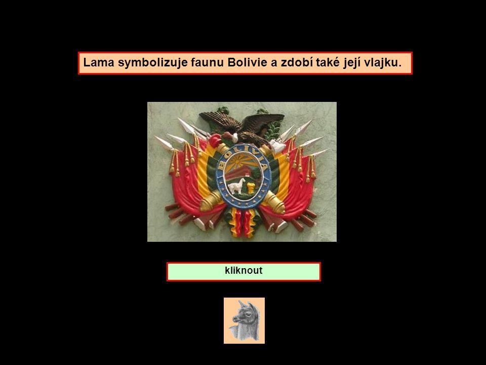Kterou zemi symbolizuje lama ? Bolivie Peru Chile