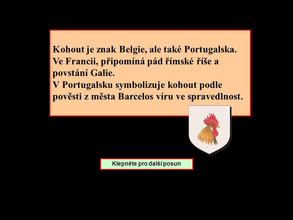 Kohout je znak Belgie, ale také Portugalska.