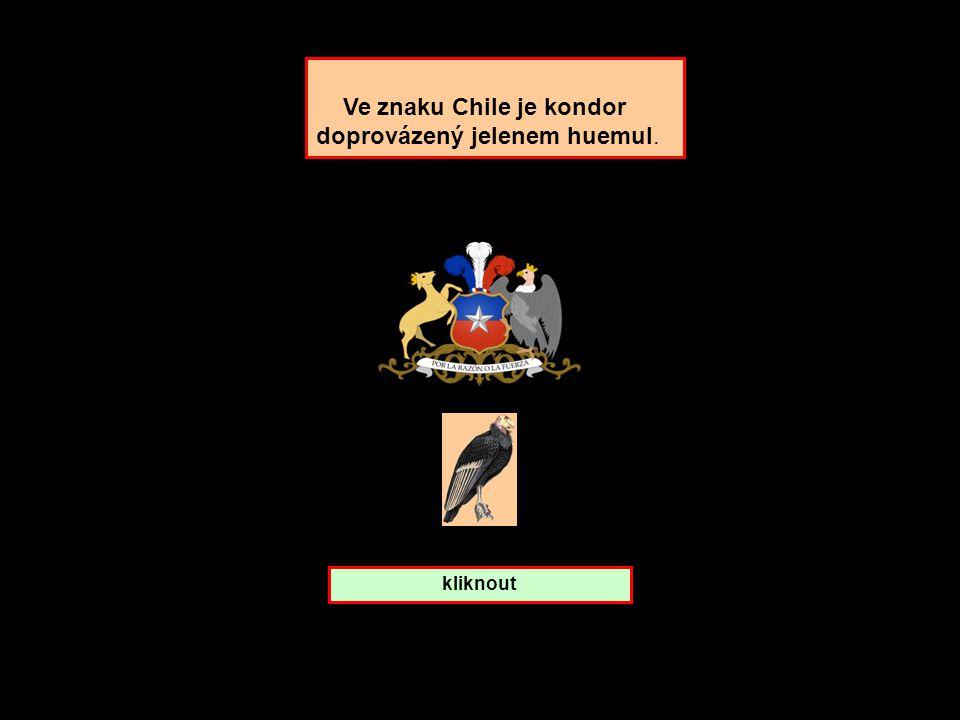 Ke kterému státu patří Kondor? Chile Peru Nepal