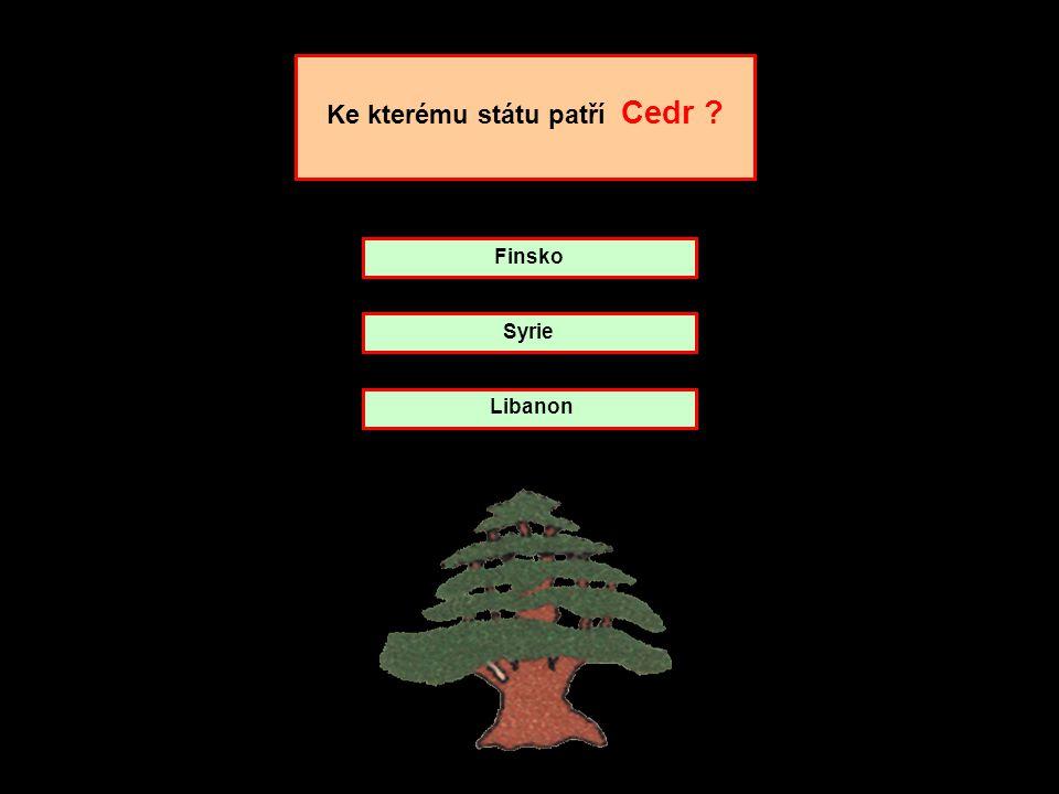 Ve znaku Chile je kondor doprovázený jelenem huemul. kliknout