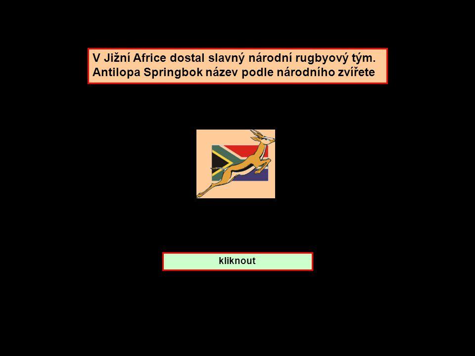 Gazela skákavá. ze které je země ? Jižní Afrika Keňa Tanzanie
