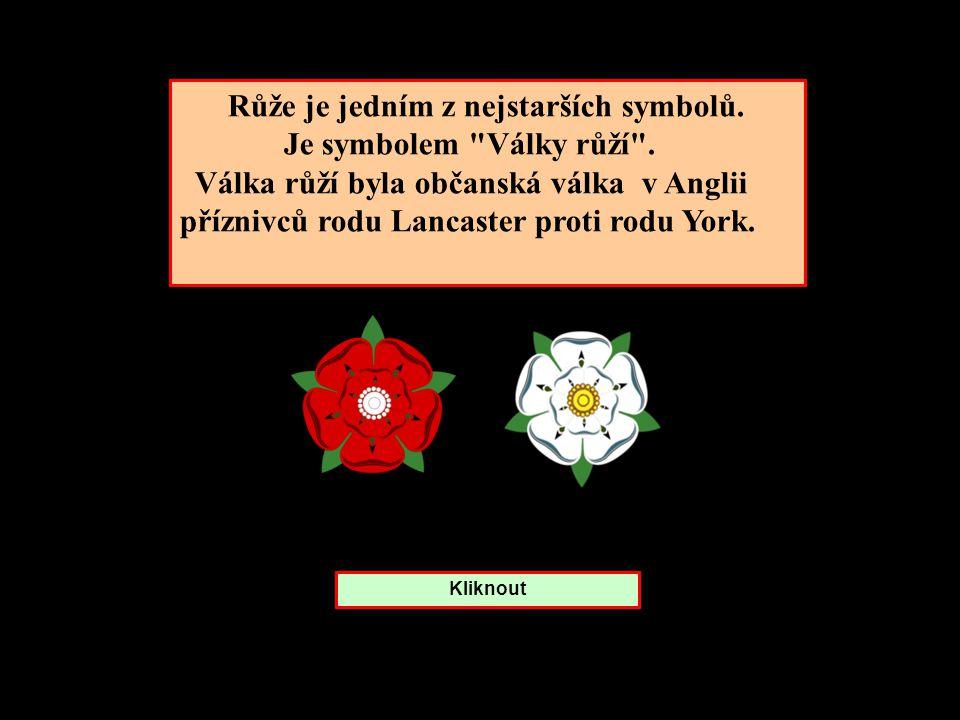 Růže je jedním z nejstarších symbolů.Je symbolem Války růží .
